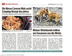 Presse Auftritt Bezirksrundschau Wels