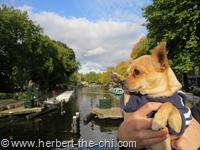Herbert in Amsterdam
