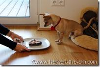 Mama überreicht mir meine Torte