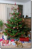 Weihnachtsbaum bei Oma