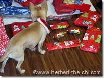 Beim Geschenke auspacken