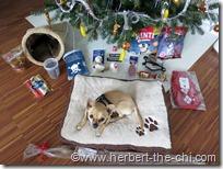 Mein Weihnachten 2012