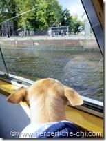 Grachtenfahrt durch Amsterdam