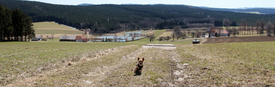 Wandern Bad Leonfelden