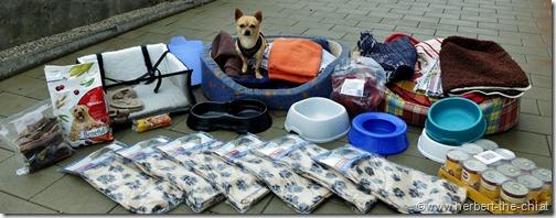 Spenden für Tierasyle im Osten