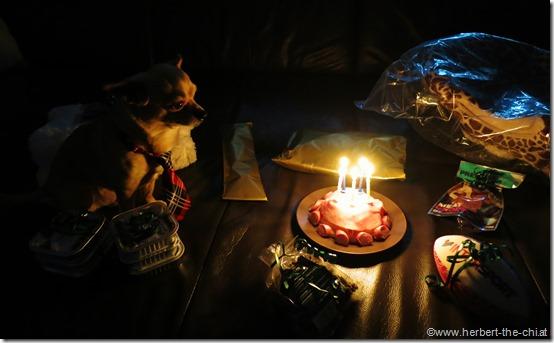 Mein 5. Geburtstag