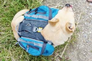 Hunderucksack Ruffwear Details