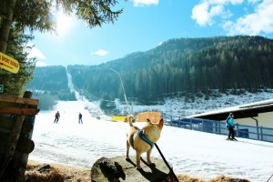 eschenhof-skihotel