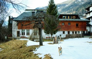 ortners-eschenhof-hund